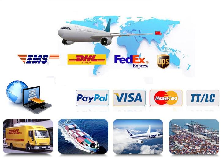 payment&transport.jpg